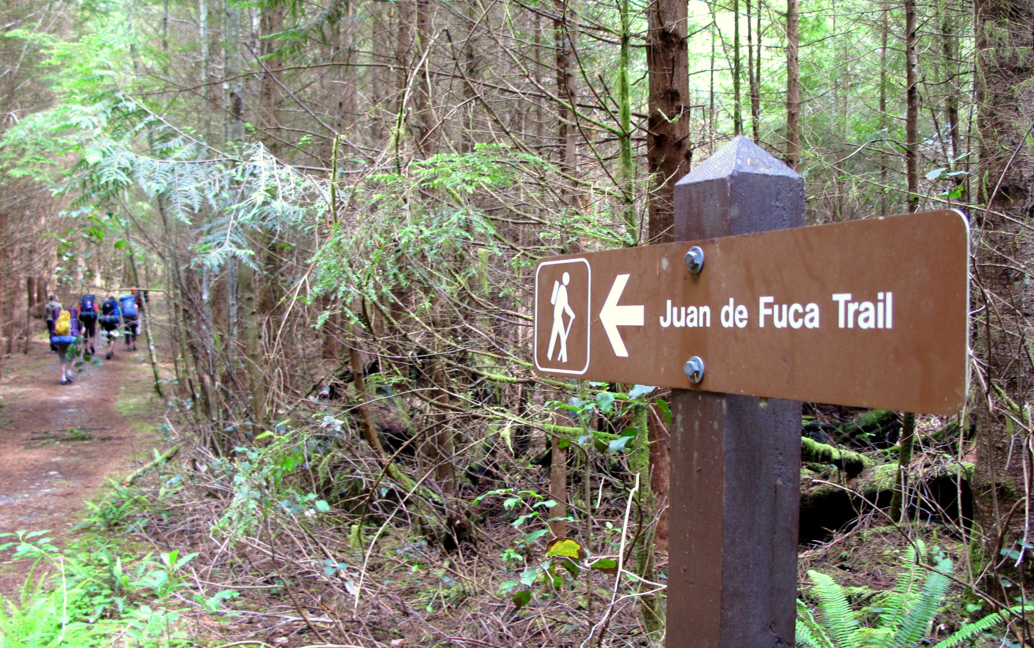 Hiking Trails South Vancouver Island