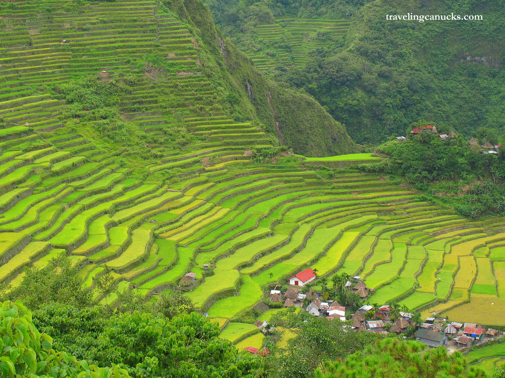 Photo of the Week: Ancient Rice Terraces of Batad, Philippines