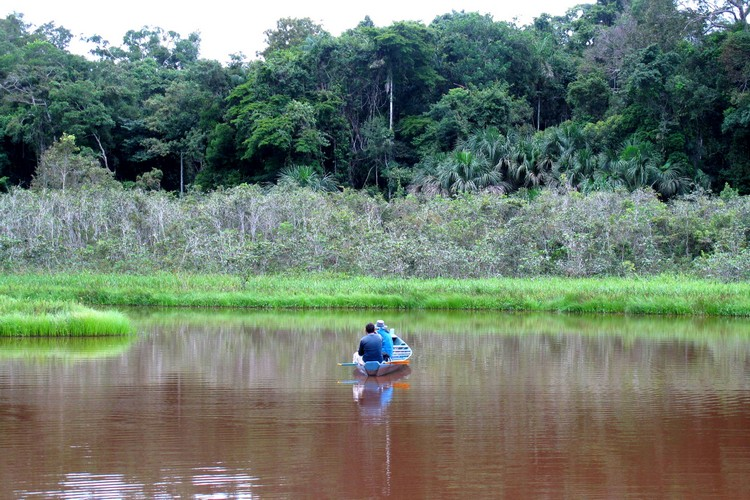 boat in the jungle of Peruvian Amazon, Peru