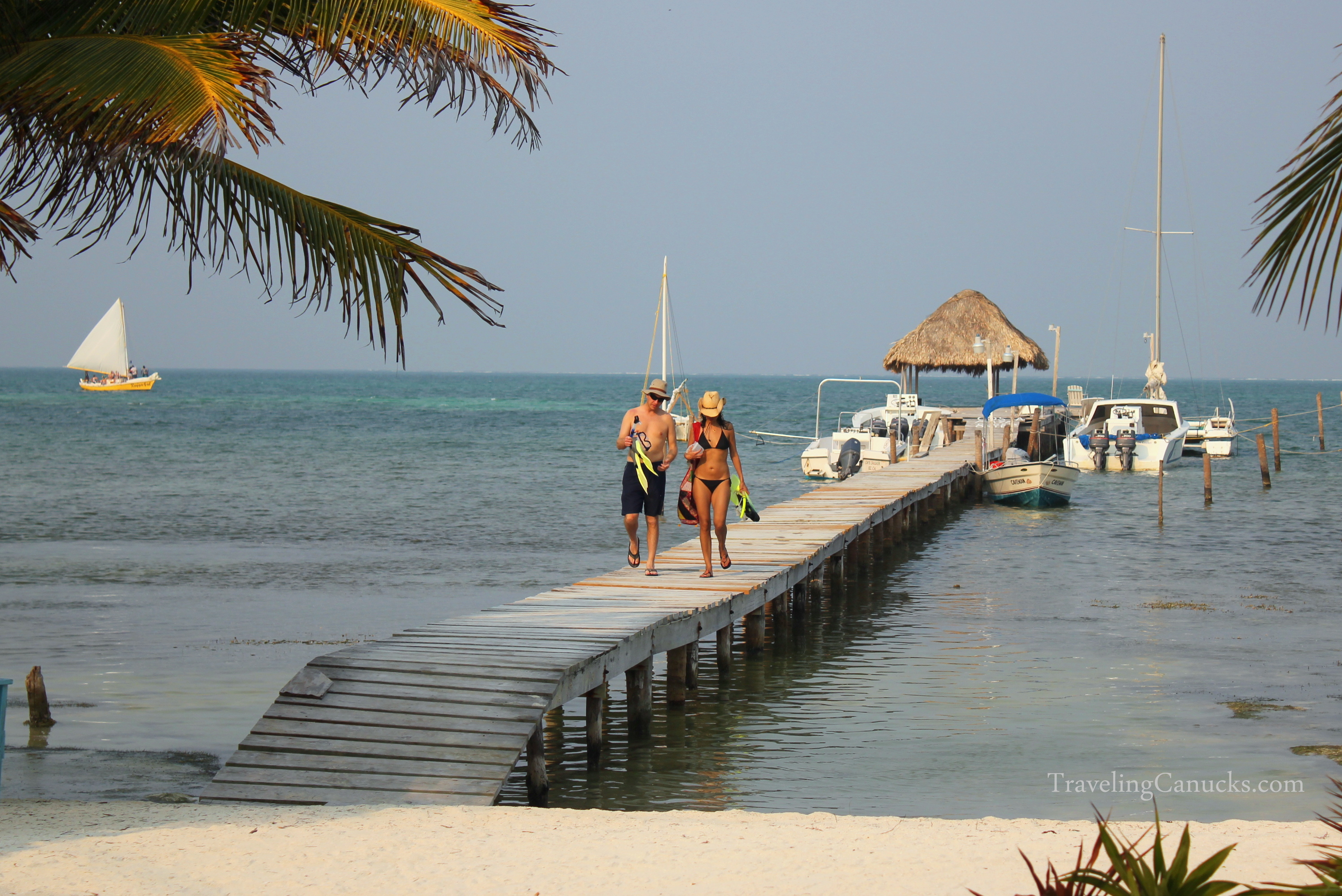 Snorkeling with Sharks, Sting Rays and Manatees in Belize