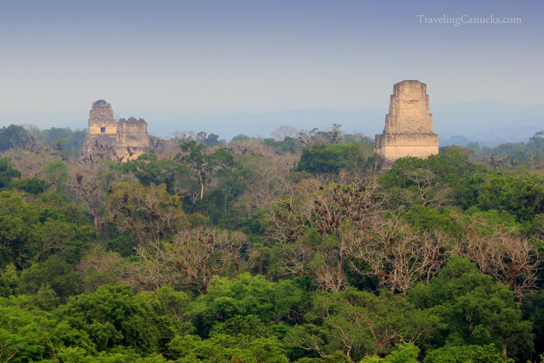 Photo of the Week: Pyramids above the Jungle Canopy