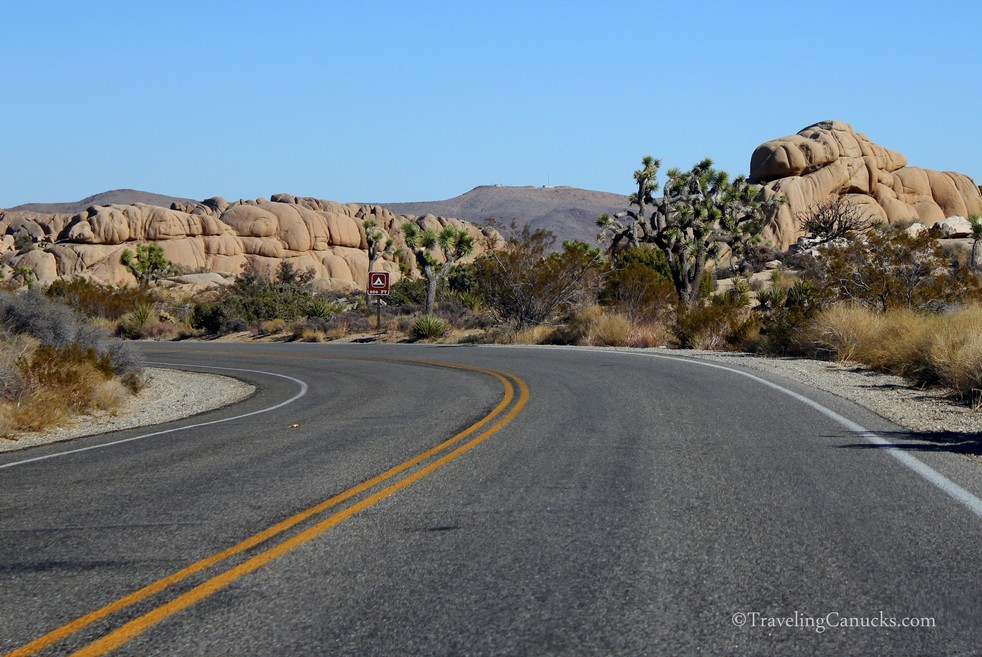 road-joshua-tree-national-park-california