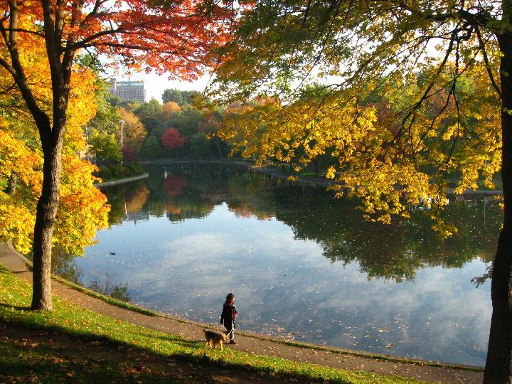 Parc Lafontaine, Montreal, Autumn