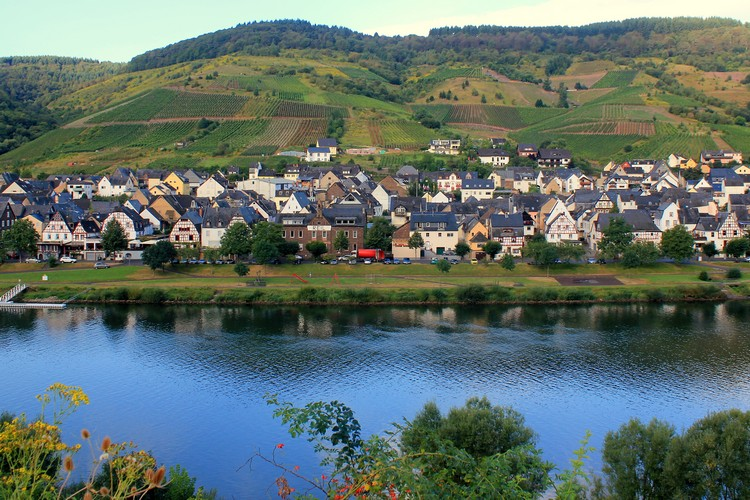 Reil village Mosel river Germany