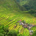 Banaue Rice Terraces in the Philippines If you find yourself in the Philippines you should seriously consider adding a visit to Banaue and the Rice...