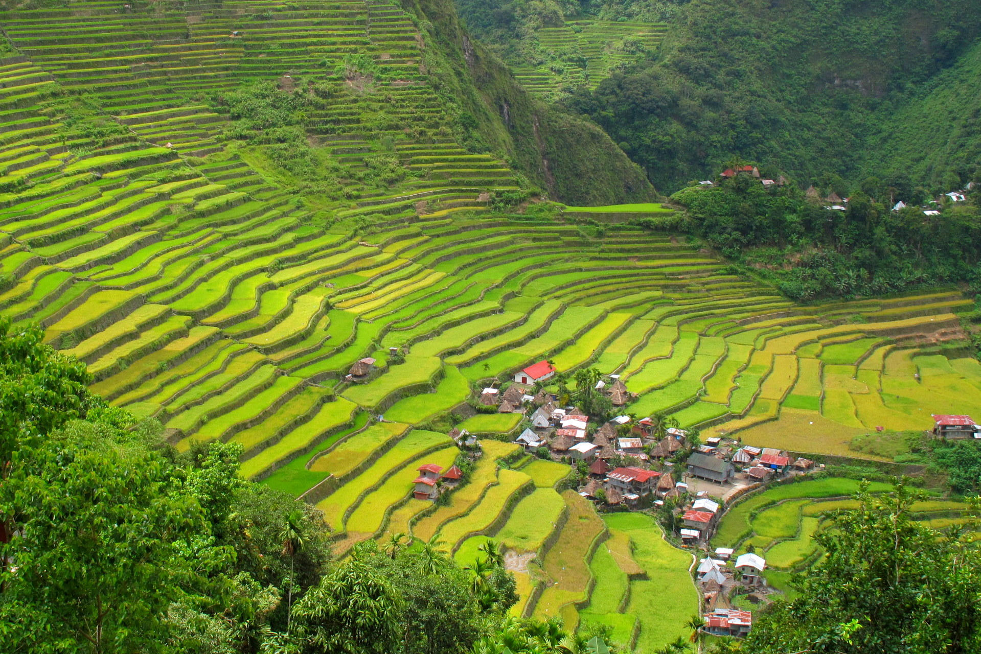 12 Photos that will make you want to visit the Banaue Rice Terraces