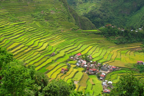 Batad Rice Terraces, Philippines