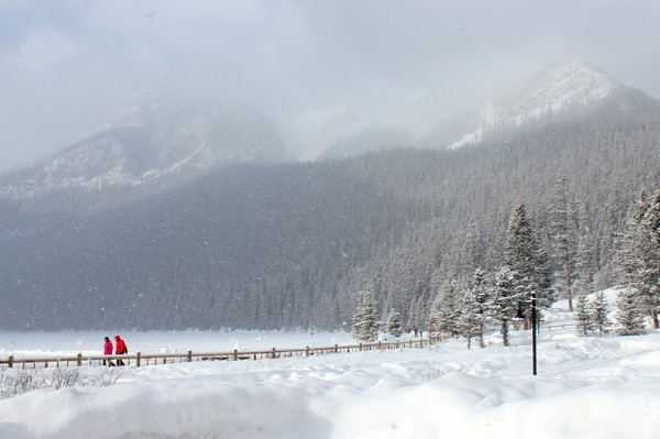 Winter in Banff National Park, Alberta