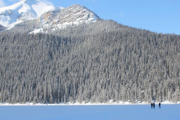 Winter in Banff National Park, Lake Louise, Alberta
