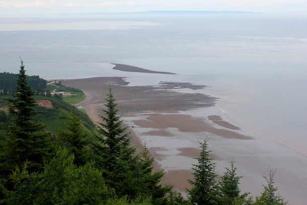 Fundy Trail Tour From Saint John