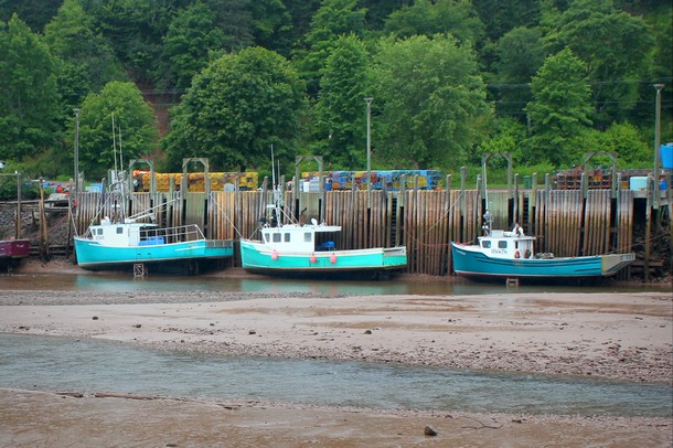 Photo of the Week: Low tide on the Bay of Fundy, New Brunswick