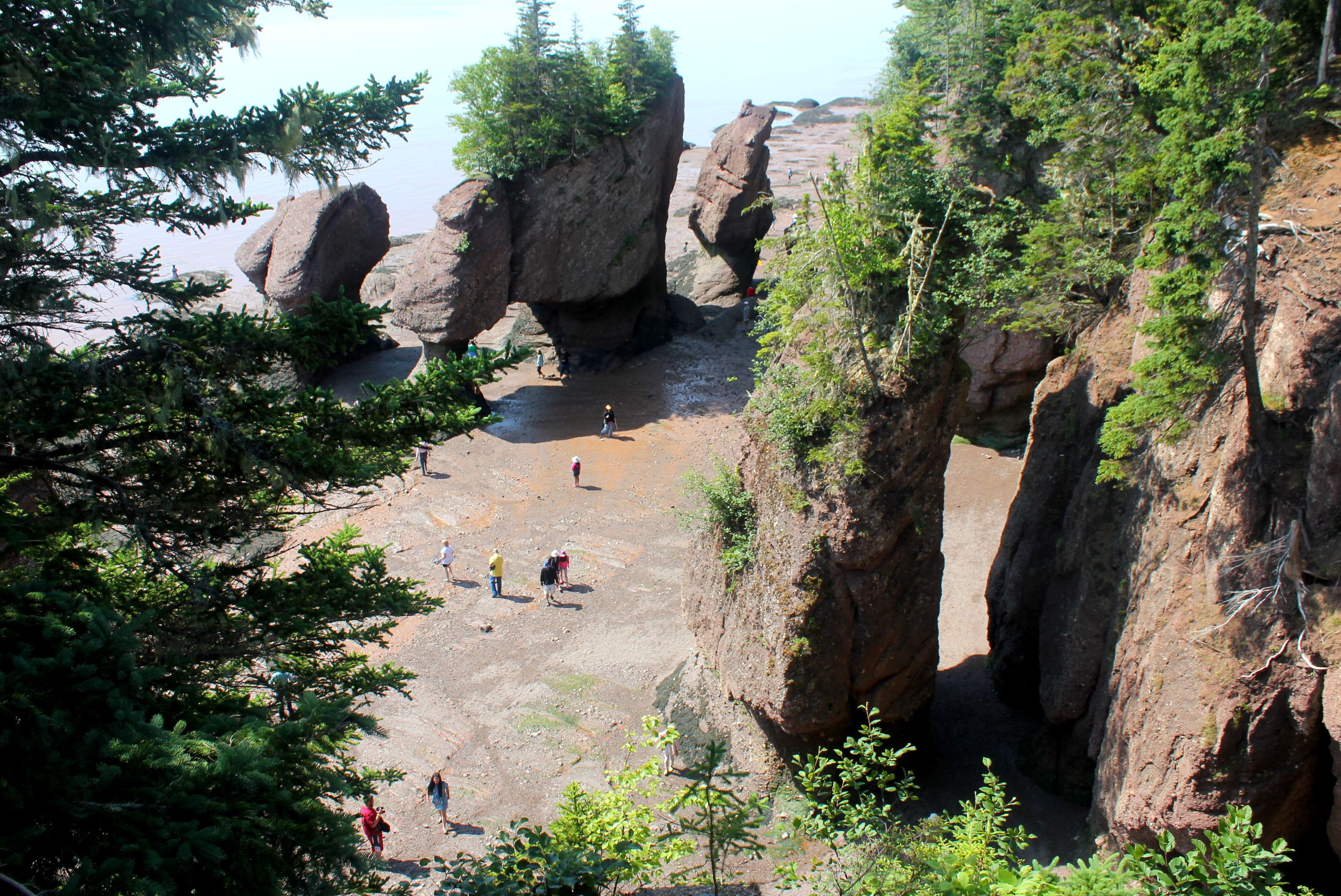 8 Things to do in New Brunswick with kids