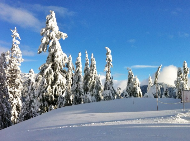 Snowboarding, Cypress Mountain, Vancouver, British Columbia