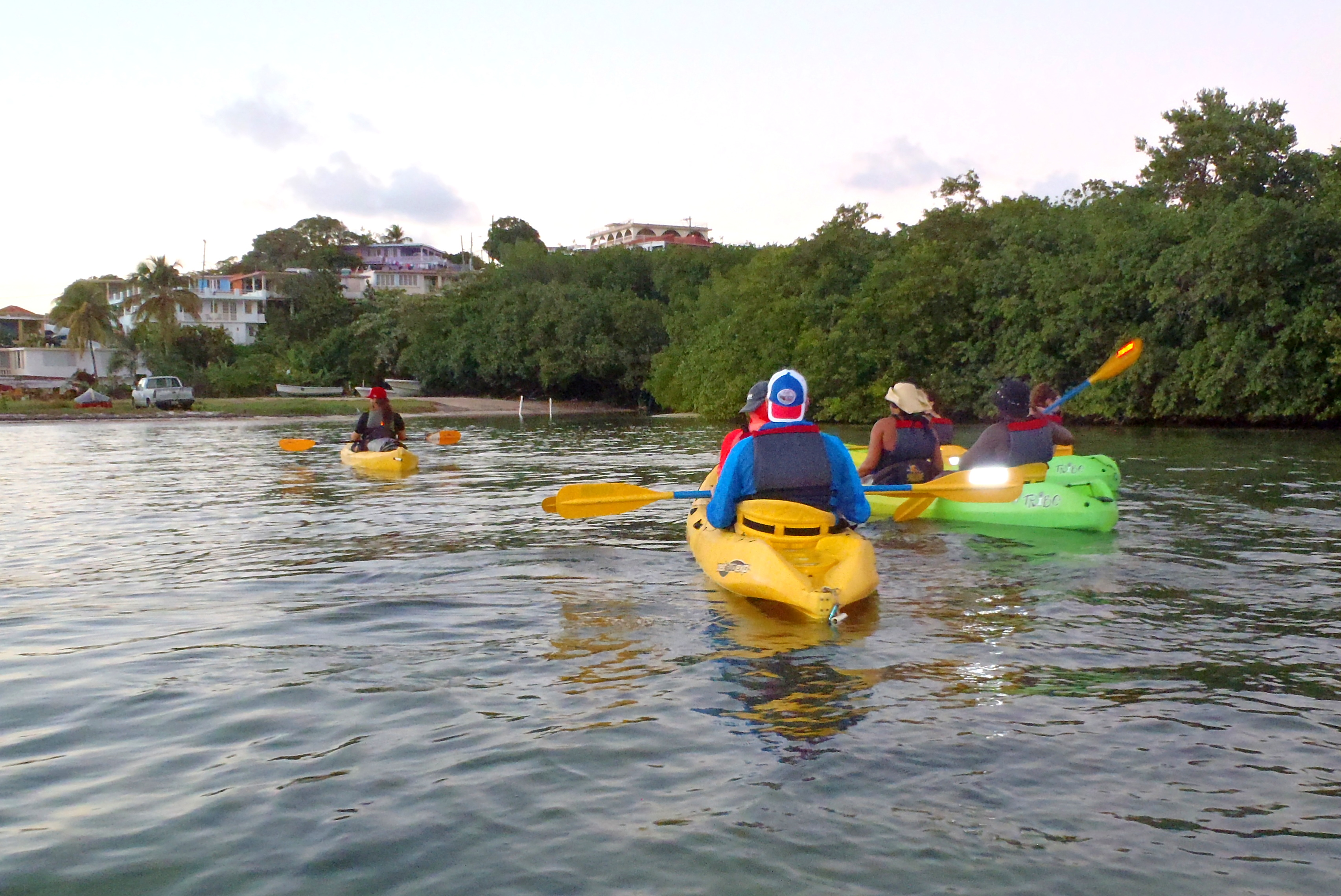 Bioluminescent Kayak Tour in Fajardo, Puerto Rico