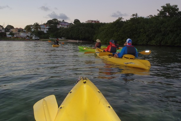 Bio-bay kayaking tour, Puerto Rico