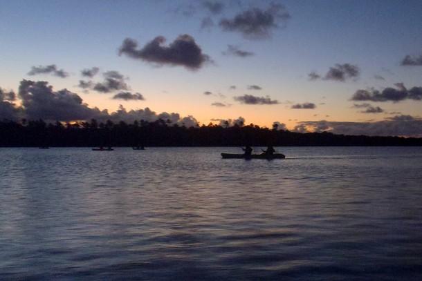 bioluminescent kayak tour, puerto rico