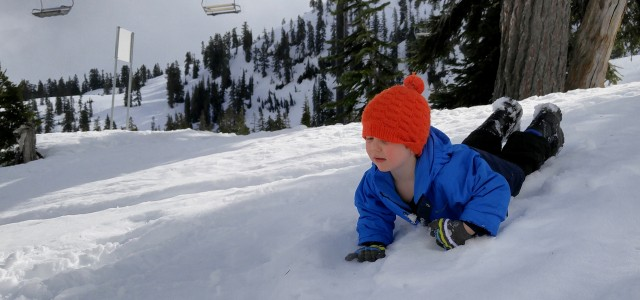 Mount Baker, Washington State On our recent trip to Mount Baker we were reminded of the importance of taking small trips. The big trips to...