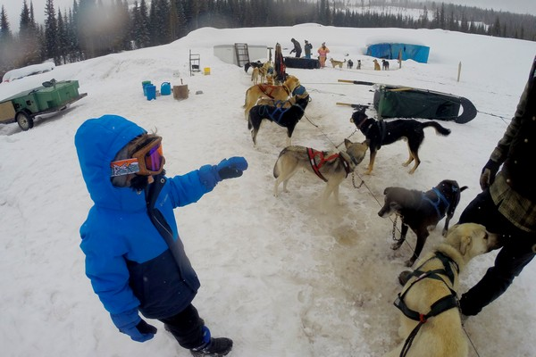 Dog sledding at Sun Peaks Resort, British Columbia, Canada