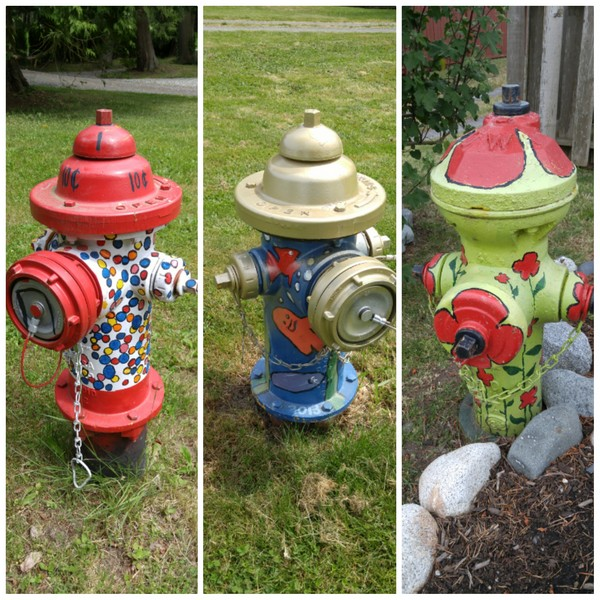 Fire hydrants on Point Roberts
