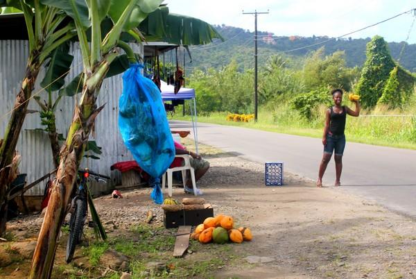 st-lucia-caribbean-island-05