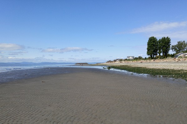 Beach, Point Roberts, Washington
