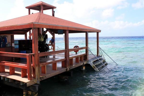 Snorkeling, De Palm Island, Aruba, Caribbean