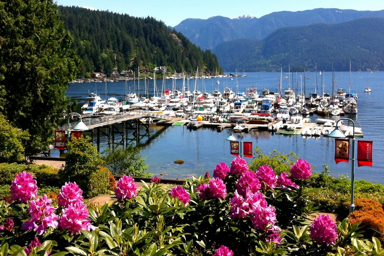 Deep cove marina in summer, free things to do in Vancouver British Columbia