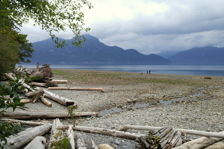 beach at Porteau Cove Provincial Park in British Columbia Canada