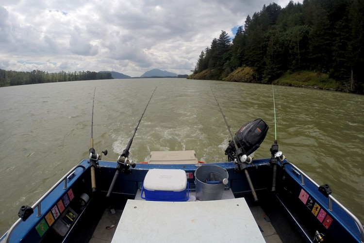 sturgeon fishing, Fraser River, Chilliwack, British Columbia, Canada