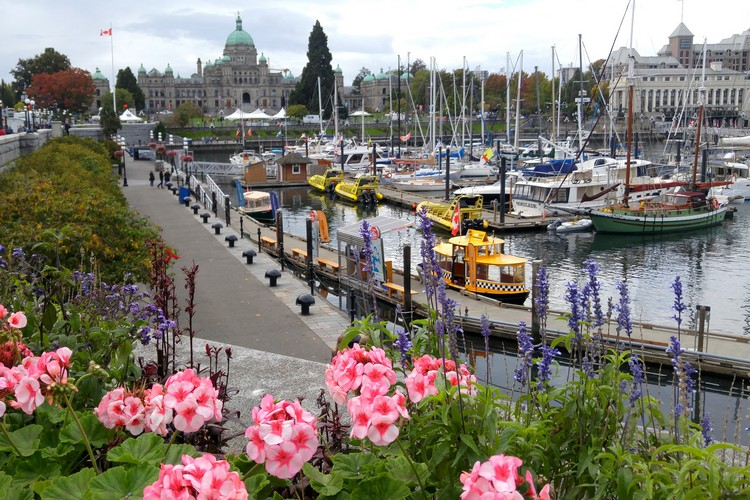 Victoria Inner Harbour, Downtown Victoria Marina, British Columbia, Canada