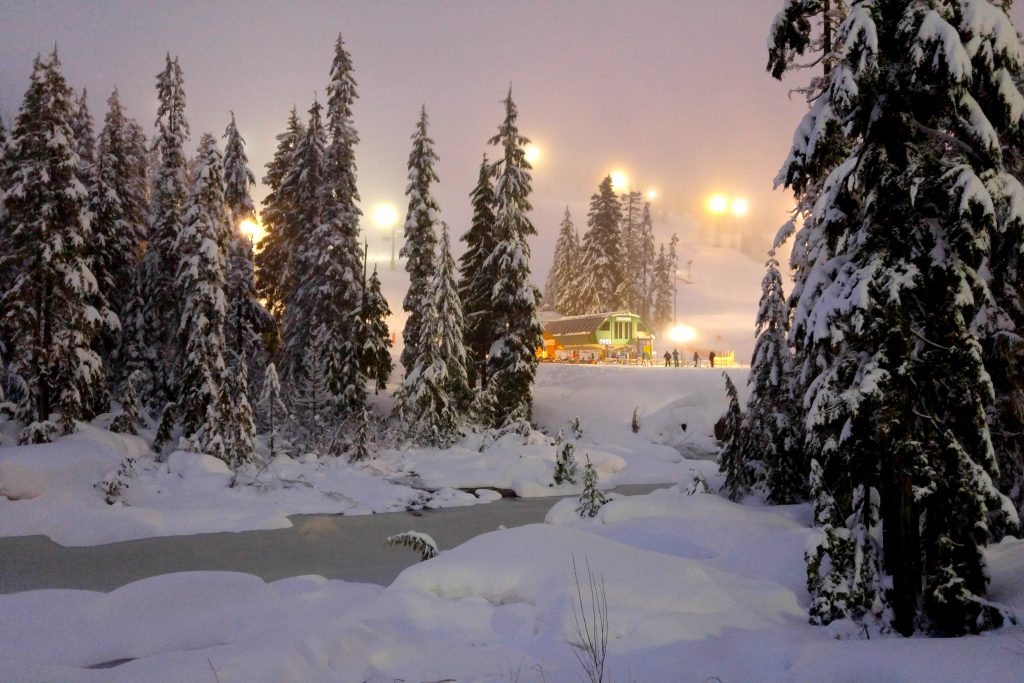 Cypress Mountain at night skiing with fresh snow on trees, Vancouver British Columbia