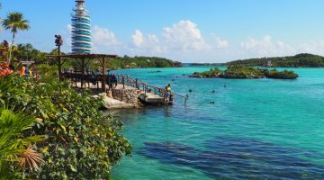 Everything you need to know about Xel-Ha Park in the Riviera Maya