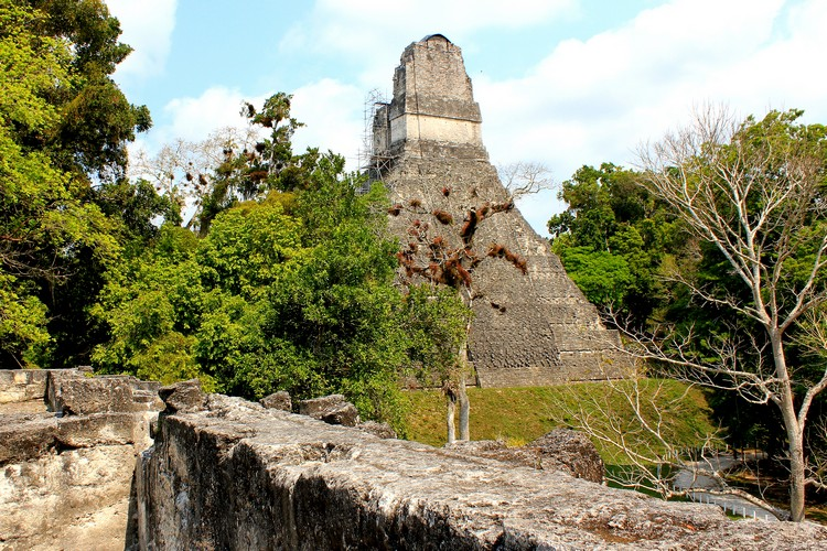 Back of Temple 1 in Tikal National Park