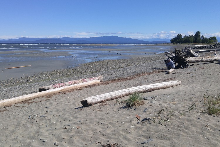 Parksville beach, Vancouver Island travel, British Columbia, Canada