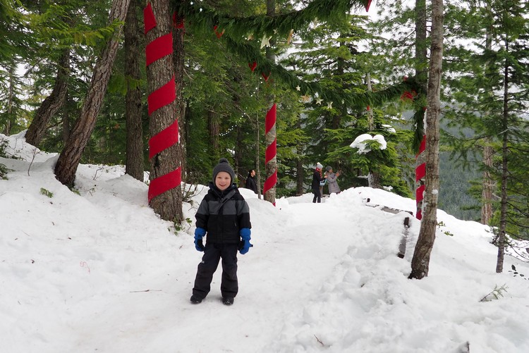 Christmas Forest Walk, Sea to Sky Gondola, Squamish, British Columbia