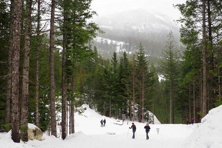 Sea to Sky Gondola, winter hiking trails, snow shoe, Squamish, British Columbia