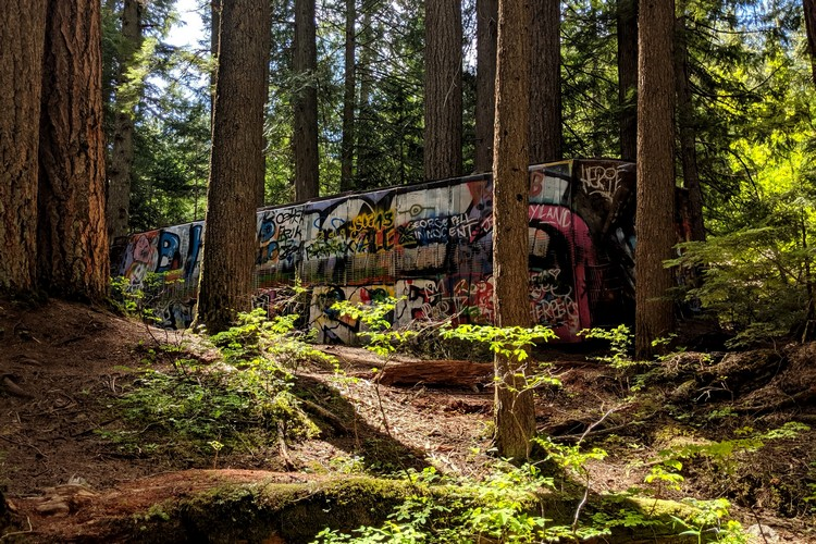 Whistler Train Wreck, Hike in Whistler, British Columbia, Canada