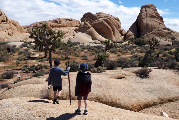 family travel destinations - Joshua Tree National Park in California