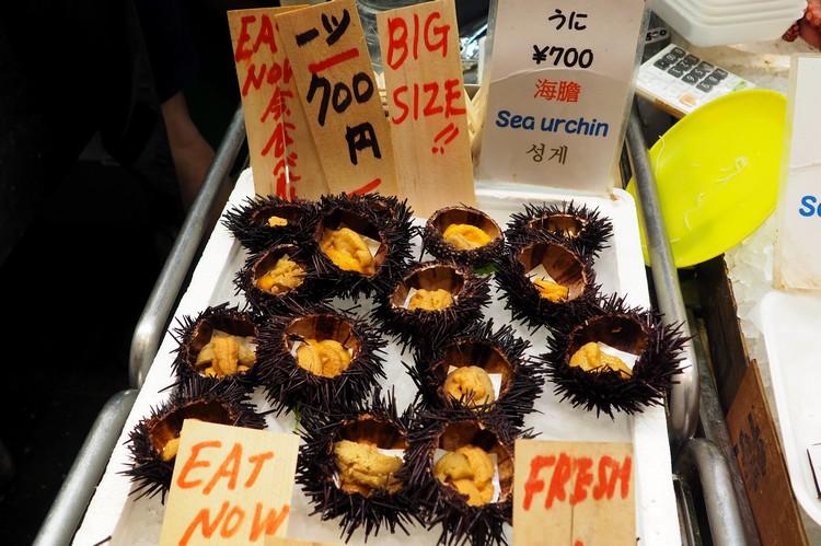 fresh sea urchin for sale at Nishiki Market in Kyoto Japan