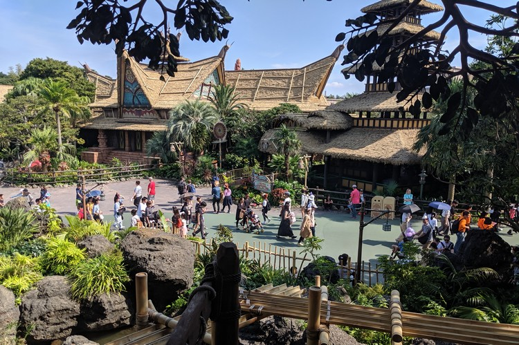 Views of The Enchanted Tiki Room from the Swiss Family Treehouse in Tokyo Disneyland