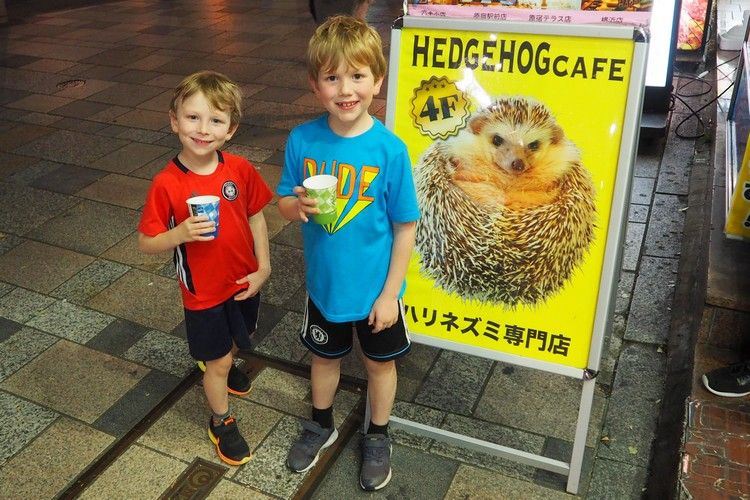 sign outside Harry hedgehog cafe in Harajuku Tokyo Japan