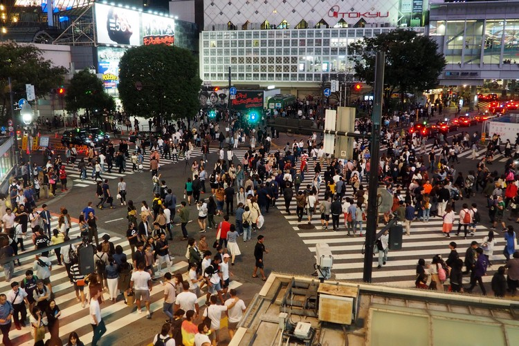 view of shibuya crossing at night from Starbucks location in Tokyo Japan