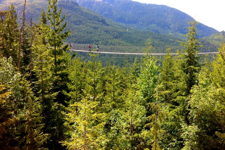 Sky Pilot Suspension Bridge at Sea to Sky Gondola in Squamish, British Columbia