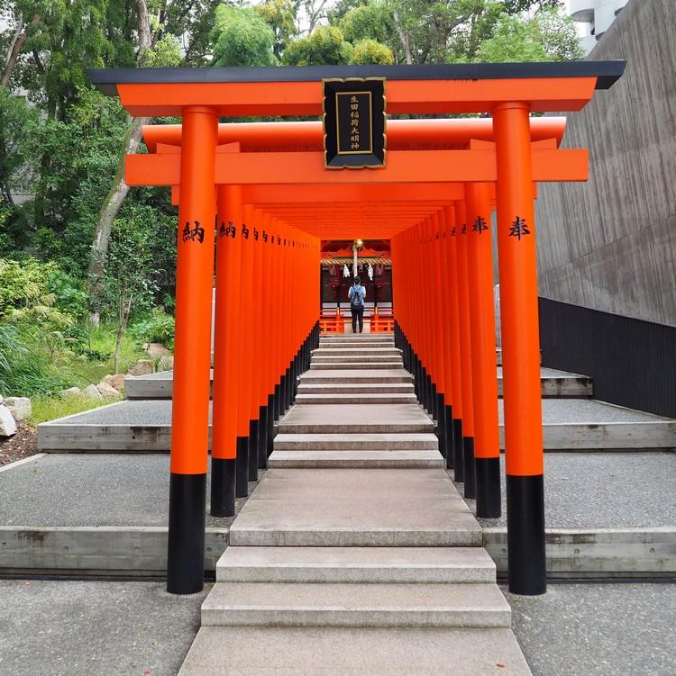 Row of bright orange torii gates inside Ikuta Shrine, Kobe Japan