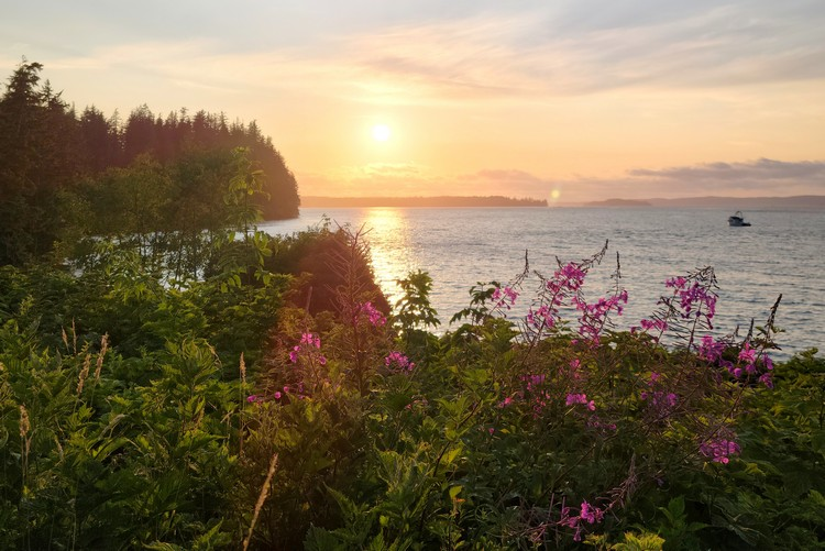 Sunset at Alder Bay RV Campground in Port McNeill on Vancouver Island British Columbia